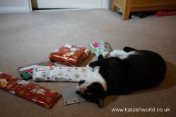 Christmas presents Secret Paw0015